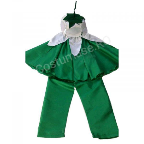 Costum Ghiocel baiat