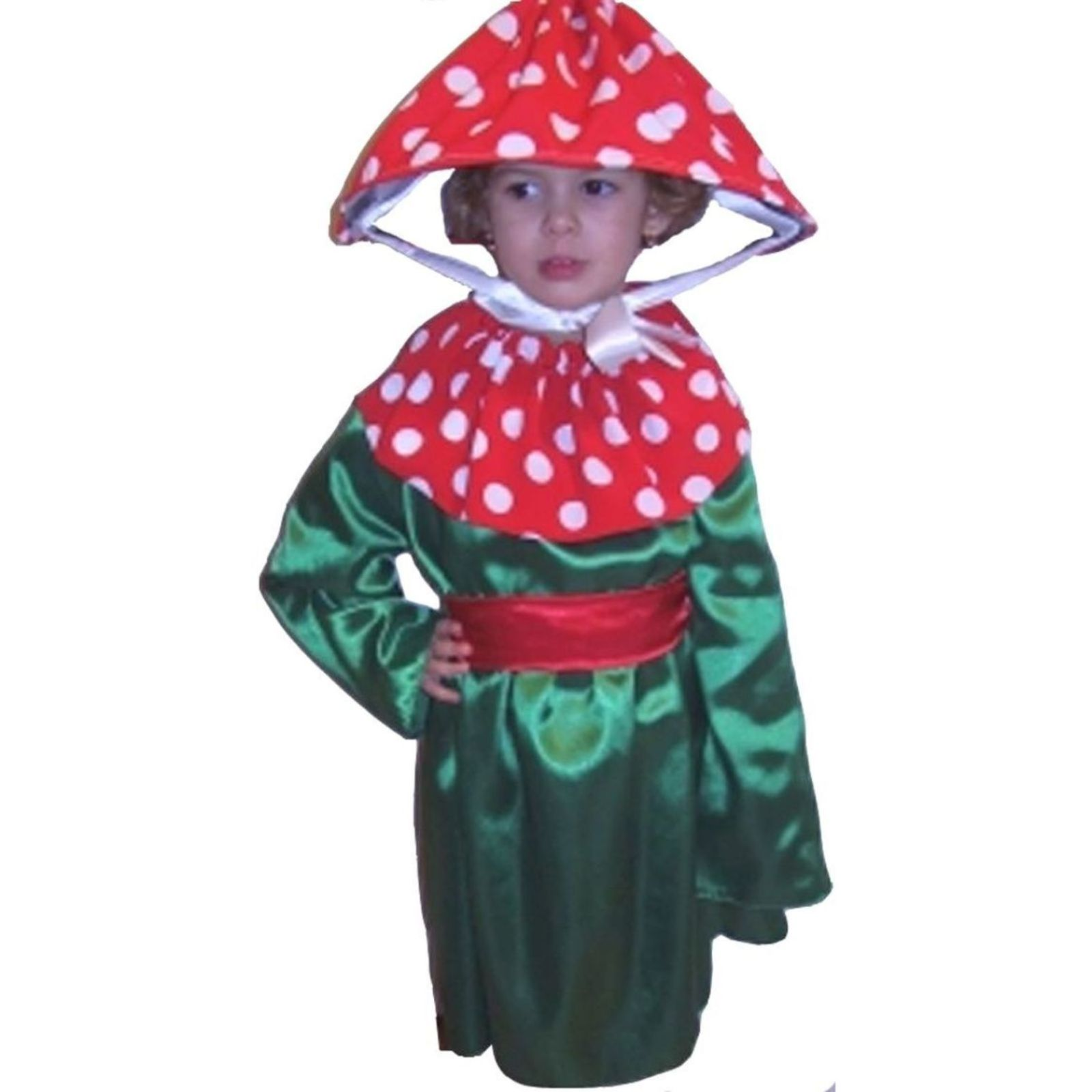 Costum de ciupercuta