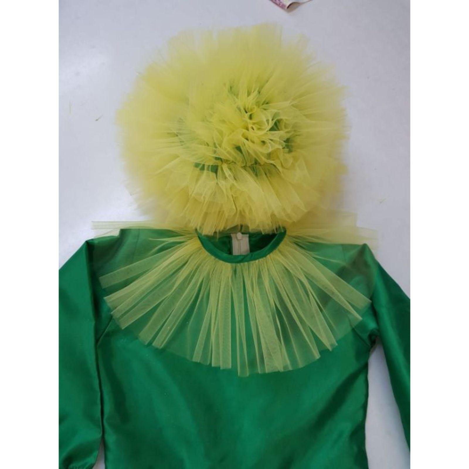 Costum de papadie-baiat 3